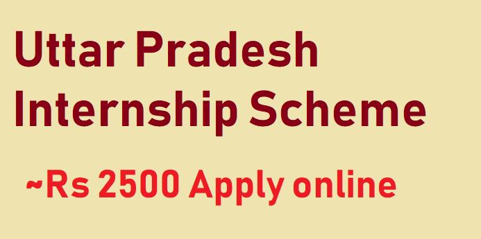UP Internship Scheme Form 2021